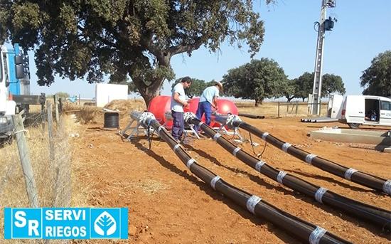 Montaje de bombeo sumergido en instalación de riego de olivar superintensivo en Monte do Trigo (Portugal).
