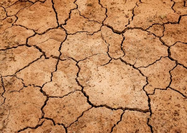 La AEMET ratifica la situación de sequía tras el estudio de los últimos doce meses.