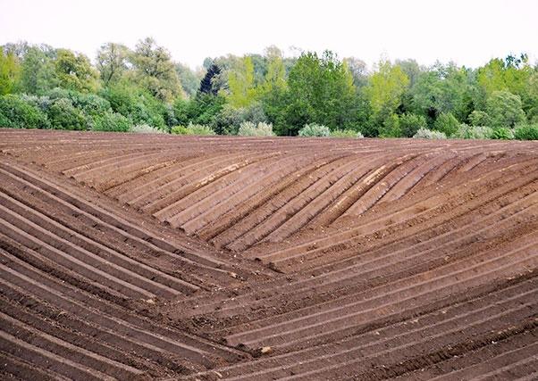 Innovaciones tecnológicas en la agricultura para la mejora del rendimiento de las explotaciones.