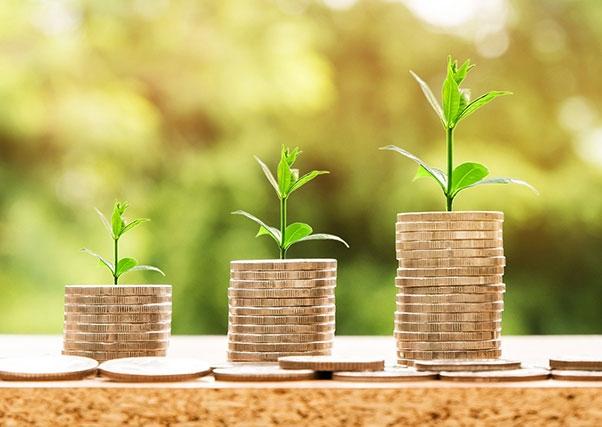 La Junta de Extremadura lanza ayudas para el acceso de los jóvenes agricultores a préstamos financieros.