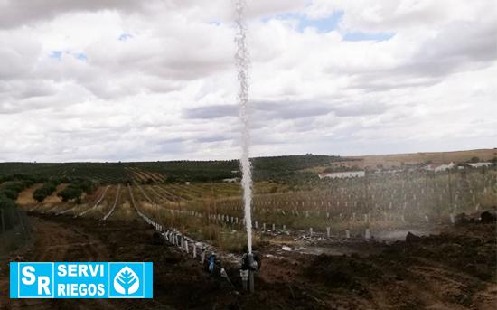 Serviriegos. Teste de pressão para irrigação de 140 Ha de olival super intensivo na Vendinha.