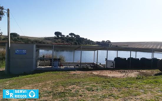 Irrigação por gotejamento para olivais superintensivos, Avís (Portugal)