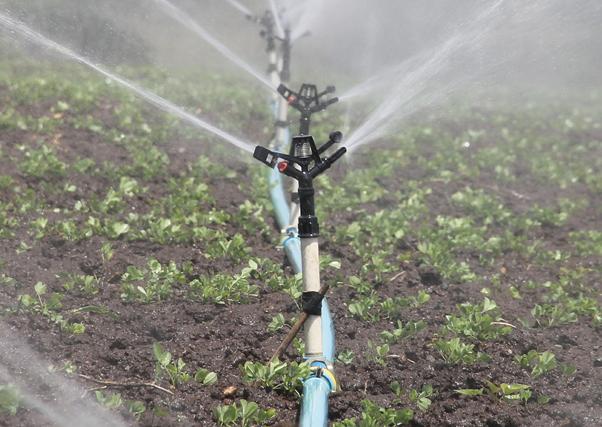 Las nuevas tarifas eléctricas, un duro golpe para los agricultores.