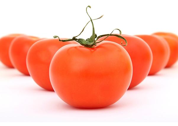 Reclaman mejor precio para el tomate para ésta y para campañas venideras